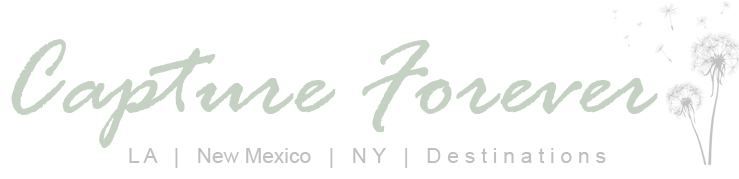 blog.CaptureForever.com logo